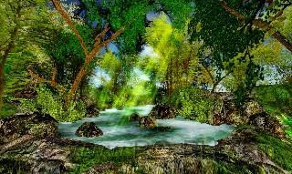 nature Savoir Faire 014 HD