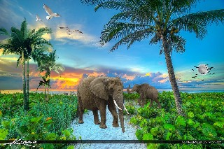 beach Sunrise tree animals elephant repack wallpaper nature